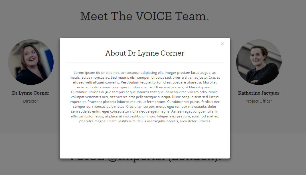 After clicking **any** of the members, it displays the bio for Lynne Corner