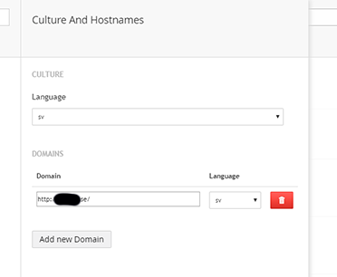 Culture and domain are set for each language version