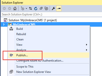 publish web deploy from visual studio to the hosting - Using